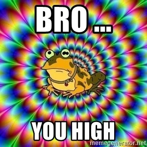 hypno toad - bro ... you high