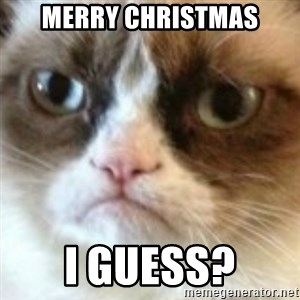 angry cat asshole - Merry Christmas I guess?