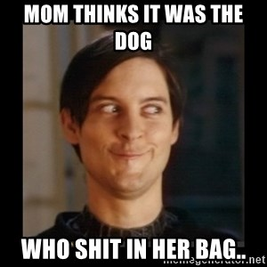 Tobey_Maguire - MOM THINKS IT WAS THE DOG  WHO SHIT IN HER BAG..