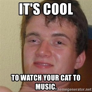 really high guy - It's cool To watch your cat to music.