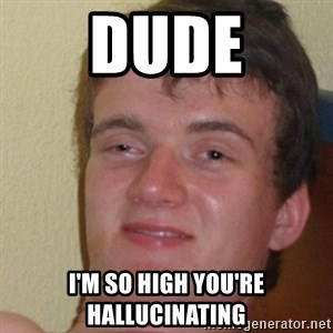 really high guy - Dude i'm so high you're hallucinating