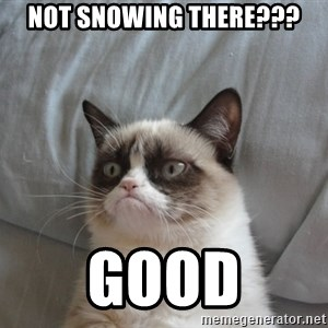 moody cat - not snowing there??? good