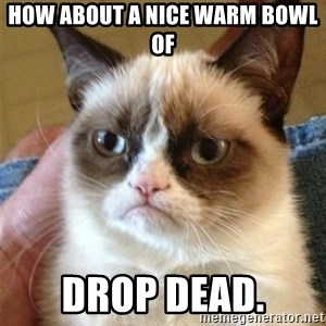 Grumpy Cat  - how about a nice warm bowl of  drop dead.