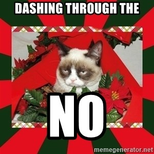 GRUMPY CAT ON CHRISTMAS - Dashing thRough the No