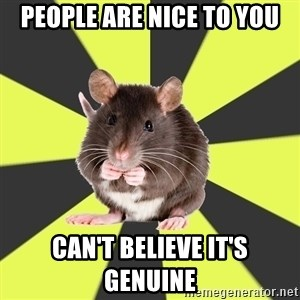 Survivor Rat - people are nice to you can't believe it's genuine