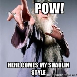 Dumbledore -          pow! here comes my shaolin style