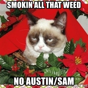 Grumpy Christmas Cat - Smokin all that weed No Austin/sam
