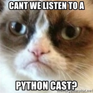 angry cat asshole - cant we listen to a python cast?
