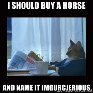 i should buy a boat cat - i should buy a horse and name it imgurcjerious