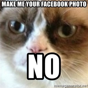 angry cat asshole - Make me your facebook photo No