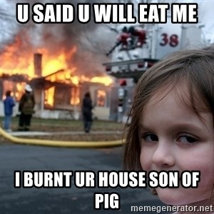 Disaster Girl - u said u will eat me i burnt ur house son of pig