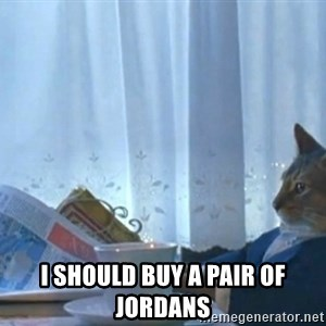 Sophisticated Cat - I should buy a pair oF Jordans