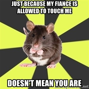 Survivor Rat - Just because my fiance is allowed to touch me Doesn't mean you are