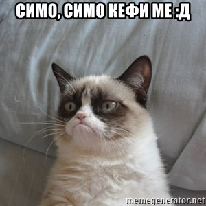 Grumpy cat good - Симо, Симо кефи ме :Д