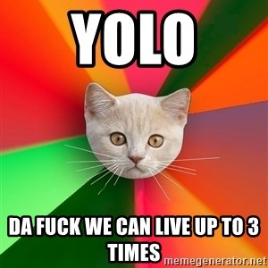 Advice Cat - YOLO  DA FUCK WE CAN LIVE UP TO 3 TIMES