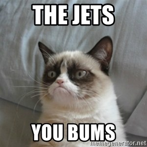 Grumpy Cat ={ - the jets you bums