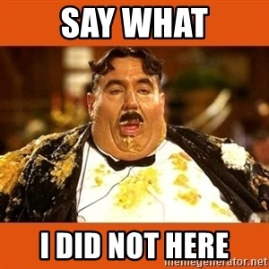 Fat Guy - SAY WHAT I DID NOT HERE