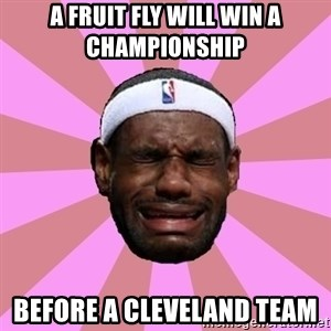 LeBron James - a fruit fly will win a CHAMPIONSHIP  before a cleveland team