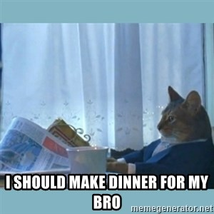 rich cat  - I SHOULD MAKE DINNER FOR MY BRO