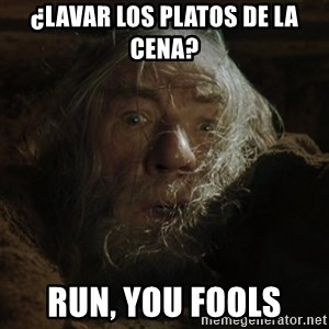 gandalf run you fools closeup - ¿Lavar los platos de la cena? Run, you fools