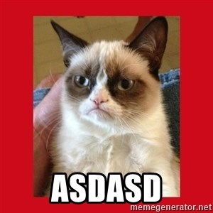 No cat - asdasd
