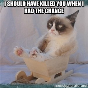 GRUMPY CAT SLED TARD - i should have killed you when i had the chance