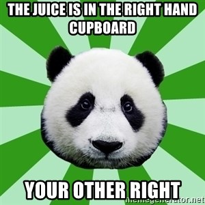 Dyspraxic Panda - The Juice is in the right hand cupboard your other right