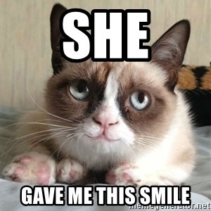 happy grumpy cat is happy - she GAVE ME THIS SMILE
