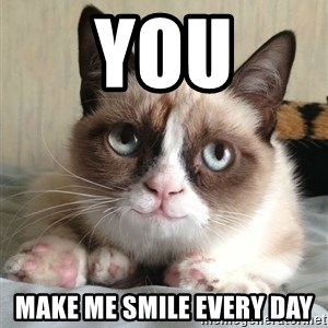 happy grumpy cat is happy - you make me smile every day