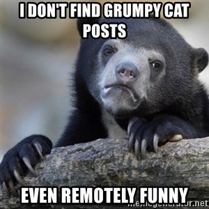 Confession Bear - I don't find Grumpy cat posts even remotely funny