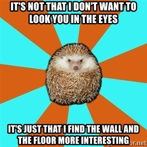 Autistic Hedgehog - it's not that i don't want to look you in the eyes it's just that i find the wall and the floor more interesting
