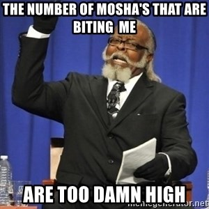 the rent is too damn highh - The number of mosha's that are  biting  me  are too damn high