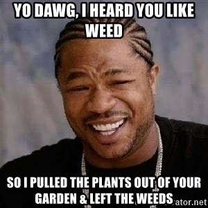 Yo Dawg - Yo Dawg, I heard you like weed so i pulled the plants out of your garden & left the weeds