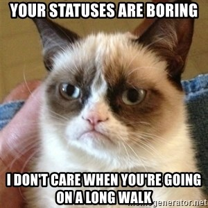 Grumpy Cat  - your statuses are boring i don't care when you're going on a long walk