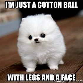 more meat for my duck - I'M JUST A COTTON BALL WITH LEGS AND A FACE