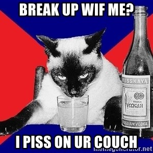 Alco-cat - BREAK UP WIF ME? I PISS ON UR COUCH
