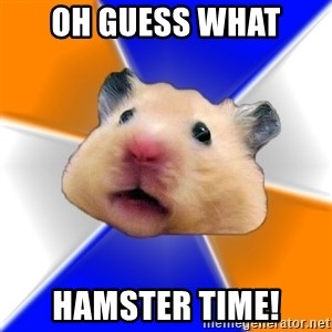 Hamster - Oh guess what Hamster time!