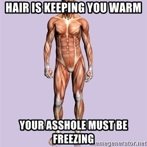 Scumbag Body #2 - Hair is keeping you warm your asshole must be freezing
