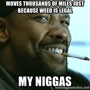 My Nigga Denzel - Moves thousands of miles just because weed is legal my niggas
