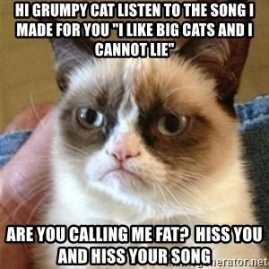 "Grumpy Cat  - hi grumpy cat listen to the song i made for you ""i like big cats and i cannot lie"" ARE YOU CALLING ME FAT?  HISS YOU AND HISS YOUR SONg"