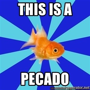 Absentminded Goldfish - this is a  pecado