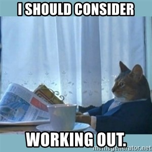 rich cat  - i should consider working out.