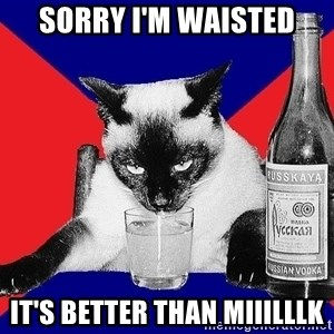 Alco-cat - SORRY I'M WAISTED IT'S BETTER THAN MIIILLLK