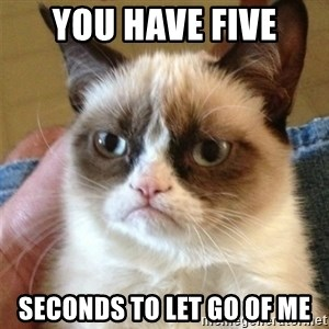 Grumpy Cat  - you have five seconds to let go of me