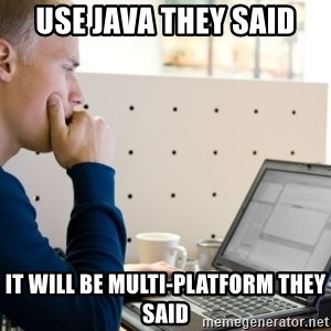 Computer Programmer - use java they said it will be multi-platform they said