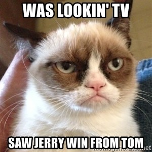Mr angry cat - was lookin' tv saw jerry win from tom