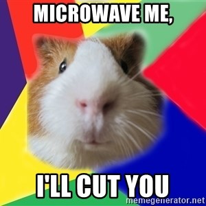 Typical guinea pig - microwave me, i'll cut you