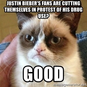 Grumpy Cat  - Justin Bieber's fans are cutting themselves in protest of his drug use? good