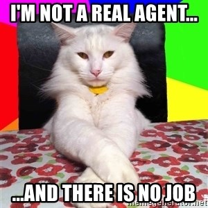 Evil Cat Bonbon - i'm not a real agent... ...and there is no job