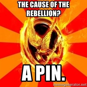 Typical fan of the hunger games - THE CAUSE OF THE REBELLION?  A PIN.